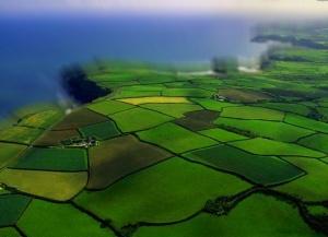Споры о границах земельных участков